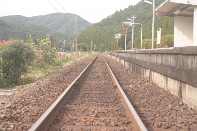 train_karatsu16